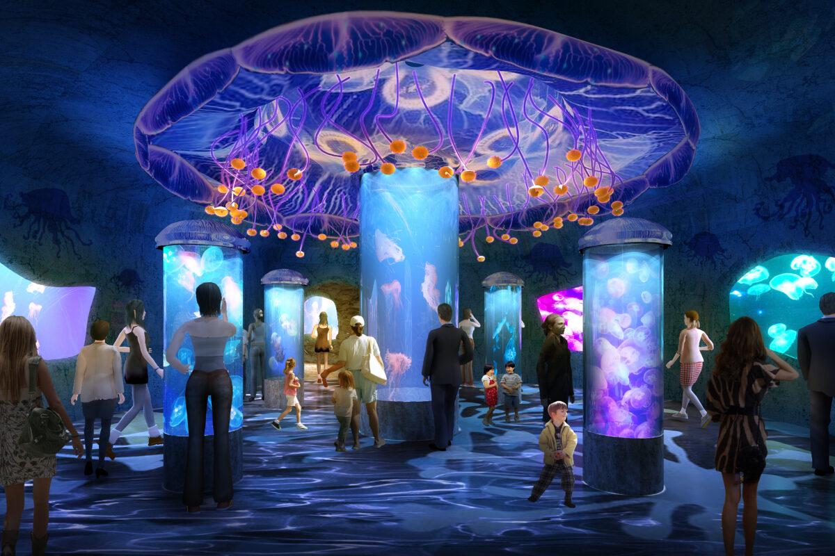 Jellyfish Exhibit Rendering